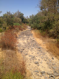 dry river bed; Photo courtesy of the Tule River Tribe