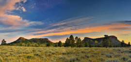 Photo of Bears Ears at Sunset.