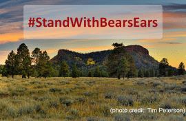 #StandWithBearsEars - photo of Bears Ears