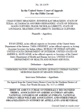 Screenshot of tribal amicus brief, click to see document