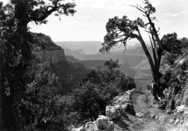 Photo of Bright Angel Trail, Grand Canyon National Park