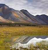 Arctic National Wildlife Refute photo of sweeping landscape
