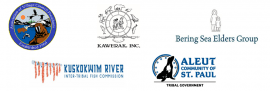 logos of the bering coalition